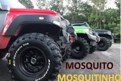 1-TrilhaMosquito